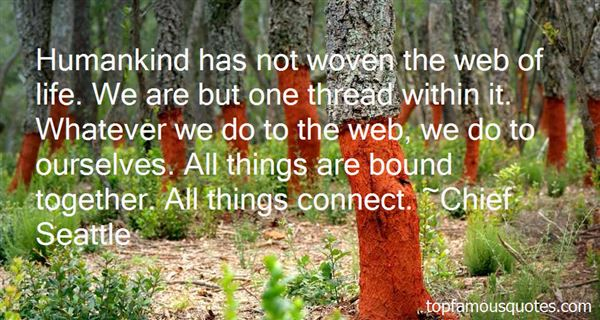 Quotes About Web Of Life