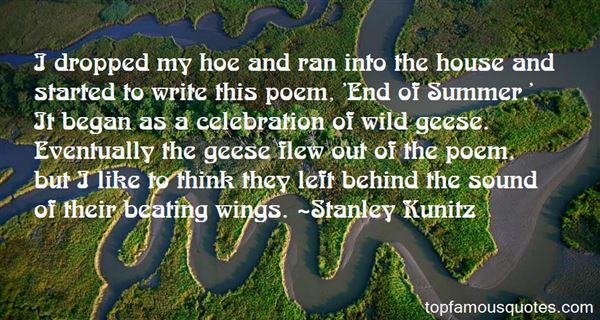 Quotes About Wild Geese