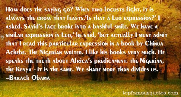 Quotes About Achebe