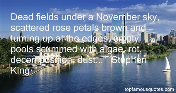 Quotes About Decomposition