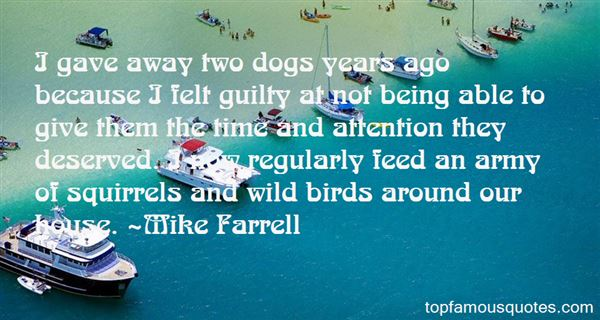 Quotes About Dogs And Squirrels