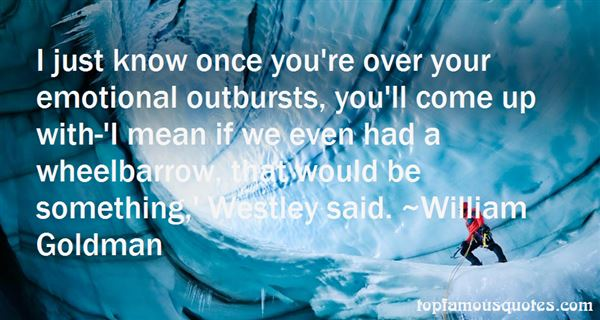 Quotes About Outburst
