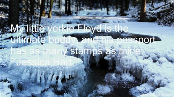 Quotes About Passport Stamps