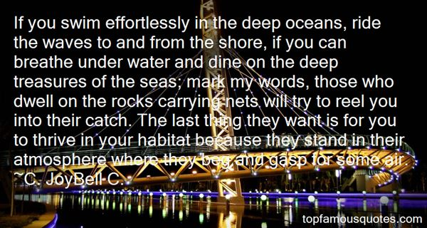 Quotes About Seas