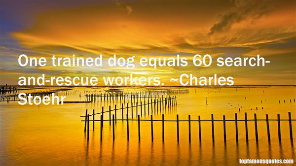 Search And Rescue Quotes: Best 4 Famous Quotes About