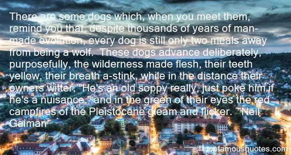 Quotes About Distance