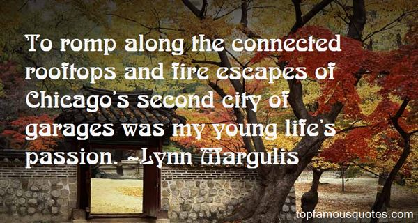 Quotes About Fire Escapes