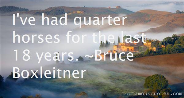 Quotes About Quarter Horses