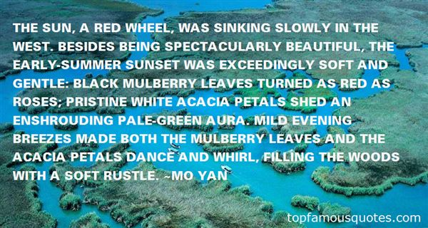 Quotes About Summer Breeze