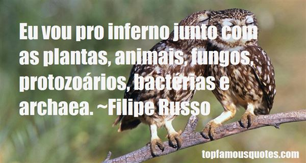 Quotes About Animais