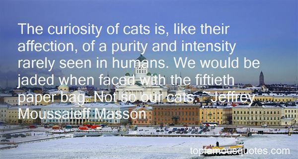 Quotes About Curiosity And Cat