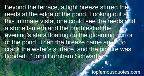 Quotes About Looking At The Stars