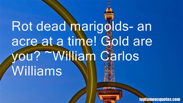 Quotes About Marigolds