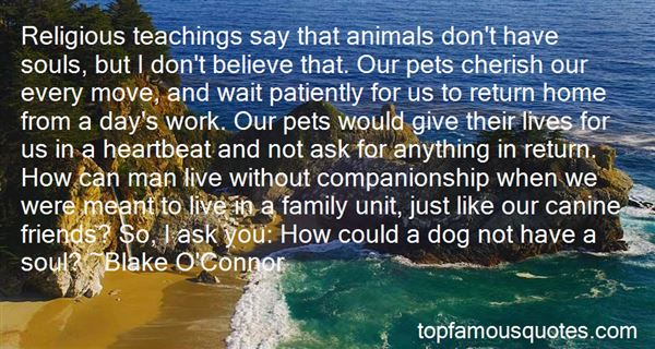 Quotes About Animal Companionship