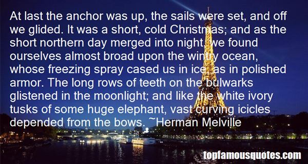 Quotes About Christmas Bows
