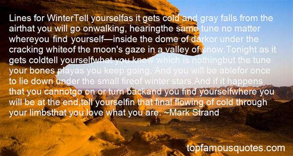 Quotes About Moon And Stars Love