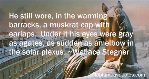 Quotes About Solar Plexus