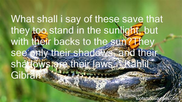 Quotes About Sunlight And Shadows