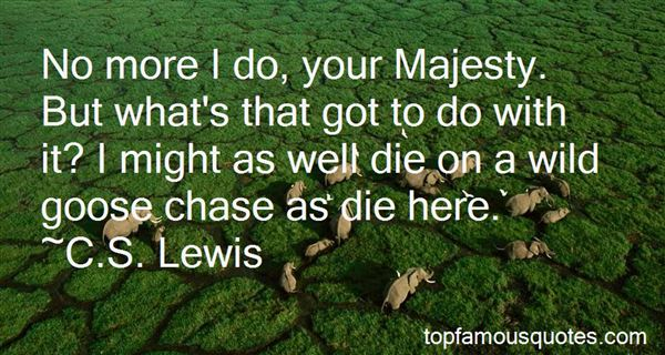 Quotes About Wild Goose Chase