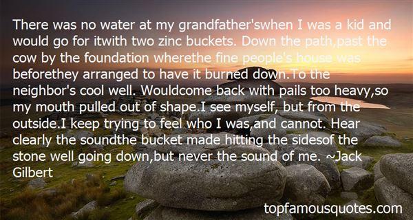 Quotes About Zinc