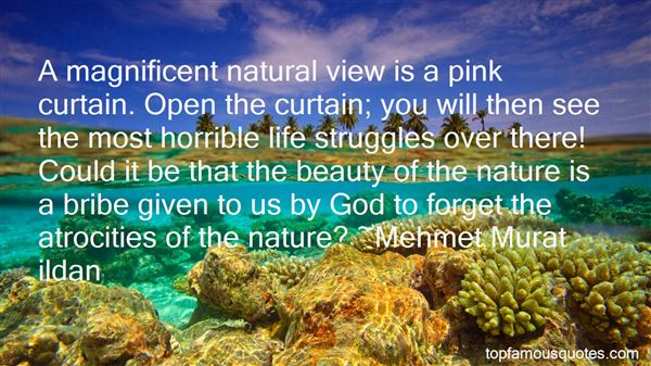 Quotes About Beauty Nature God
