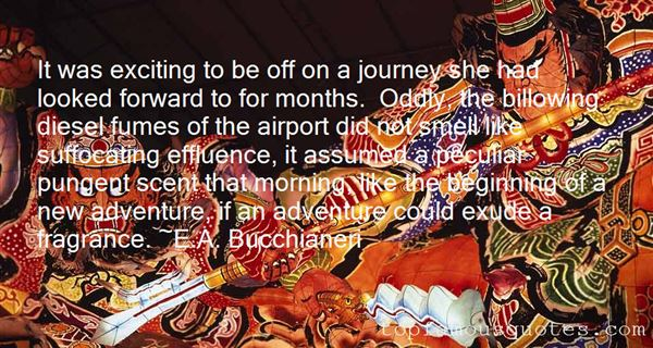 Quotes About Beginning A New Adventure