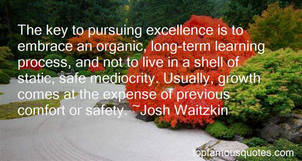 Quotes About Excellence And Mediocrity
