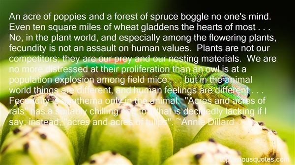 Quotes About Flowering Plants