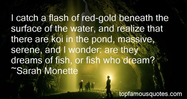 Quotes About Koi Fish