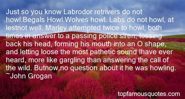 Quotes About Labs