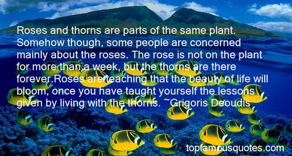 Quotes About Roses With Thorns