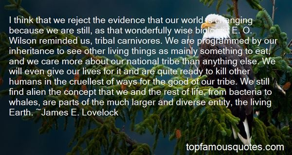 Quotes About Wonderful Things In Life