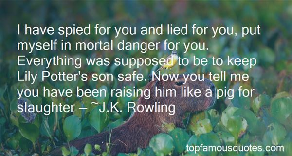 Quotes About Lily Potter