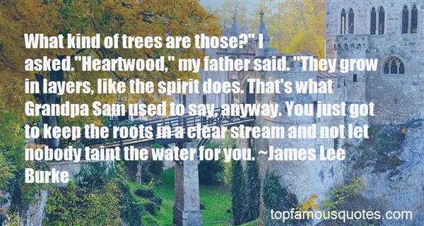 Quotes About Trees And Roots