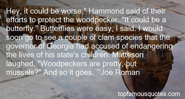 Quotes About Woodpeckers