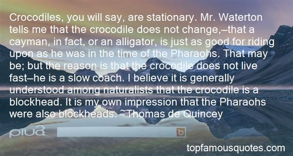 Quotes About Pharaohs