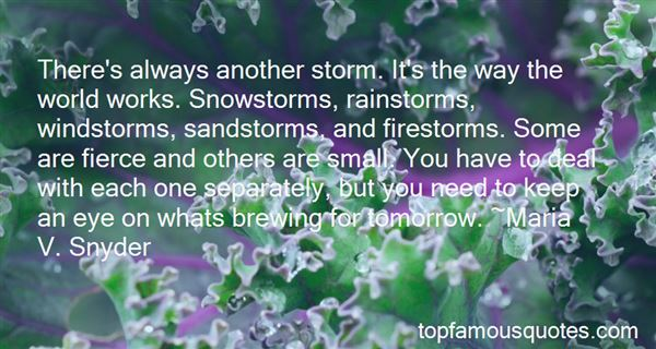 Quotes About Snow Storms