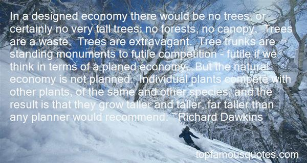 Quotes About Tree Canopy