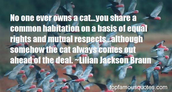 Quotes About A Cat