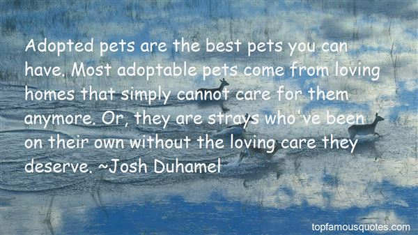 Quotes About Adopted Pets