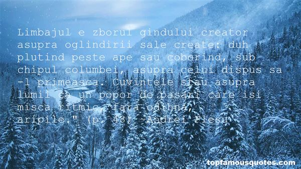 Quotes About Aripi
