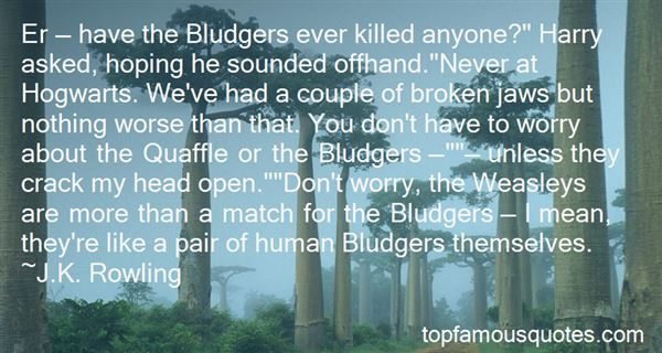 Quotes About Bludgers