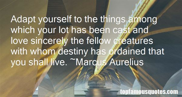Quotes About Destiny In Love