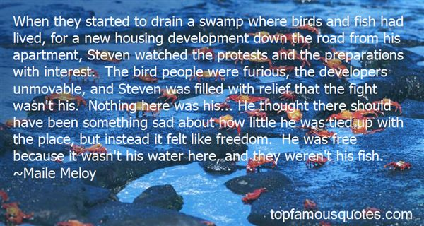 Quotes About Free Like A Bird
