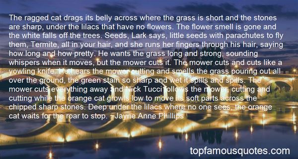 Quotes About Grass Cutting