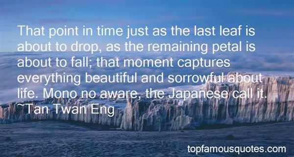 Quotes About Japanese Whaling