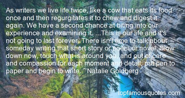 Quotes About Life Writers