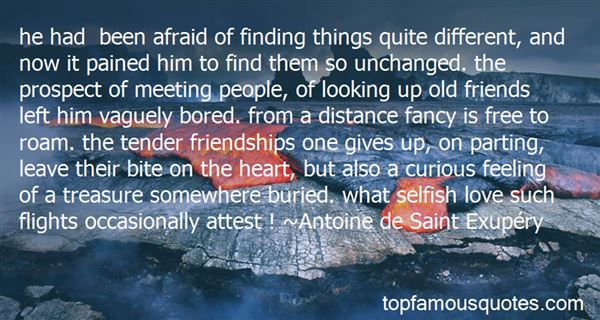 Quotes About Looking Up To A Friend