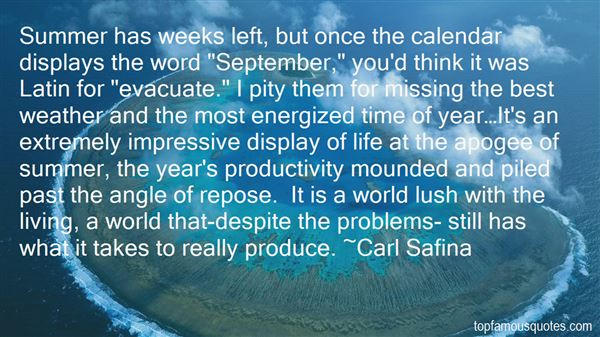 Quotes About Missing Deadlines