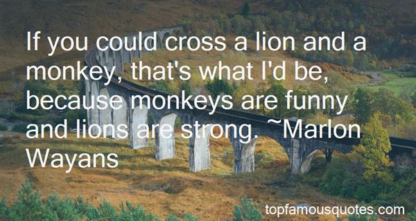 Quotes About Monkeys Funny